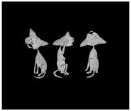 three_kittens_01